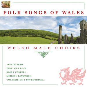Folk Songs of Wales /  Various