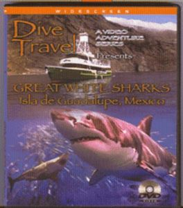 Great White Sharks-Isla de Guadalupe-Mexico