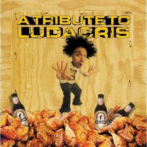 Tribute to Ludacris /  Various