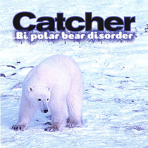 Bi Polar Bear Disorder