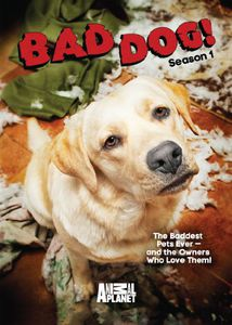 Bad Dog: Season 1