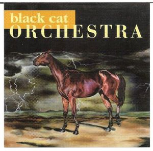 Black Cat Orchestra