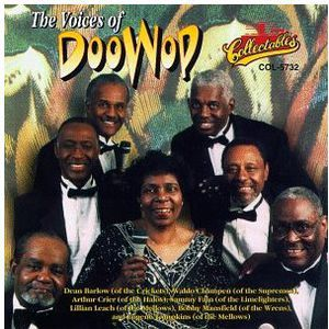 Voices of Doo Wop /  Various