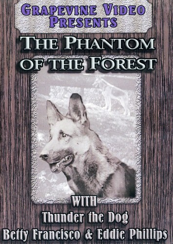 Phantom of the Forest (1926)