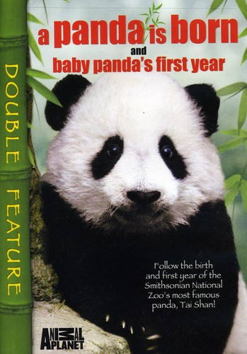 Panda Is Born & Baby Panda's First Year