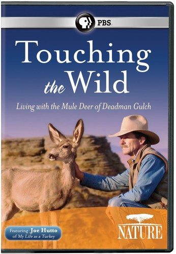 Nature: Touching the Wild - Living with Mule Deer