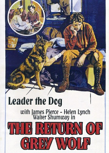Return of Grey Wolf (1926)