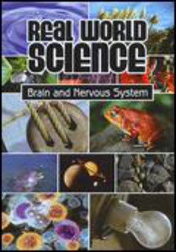 Brain & Nervous Systems
