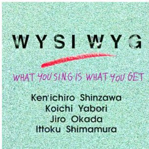 What You Sing Is What You Get [Import]
