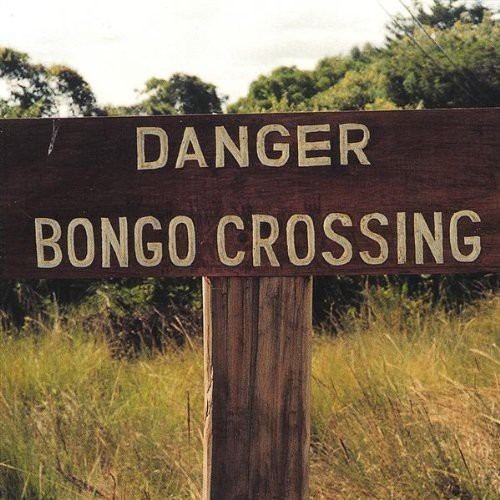 Danger Bongo Crossing