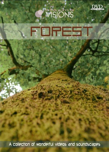 Visions 5: Forest /  Various