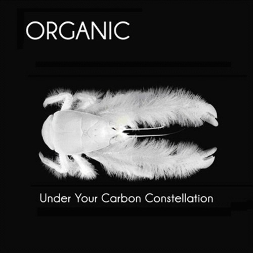 Under Your Carbon Constellation
