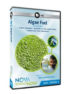 Nova: Science Now 2009 - Episode 6 - Algae Fuel