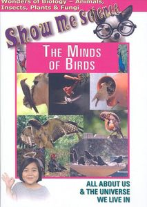 Minds of Birds