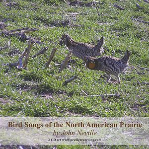 Bird Songs of the North American Prairie