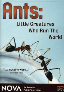 Nova: Ants - Little Creatures Who Run the World