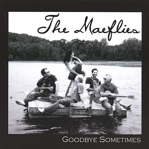 Goodbye Sometimes