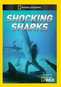 Shocking Sharks