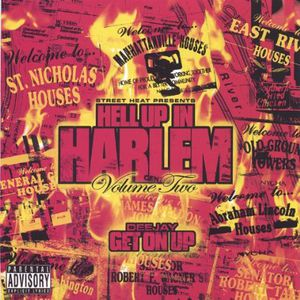 Hell Up in Harlem 2