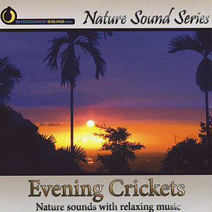 Evening Crickets (With Relaxing Music)