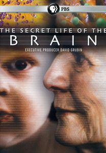 Secret Life of Brain