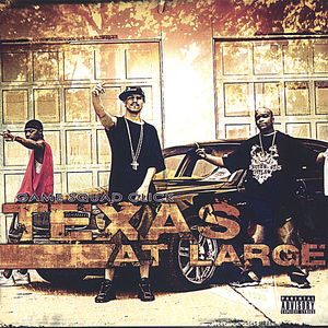 Texas at Large