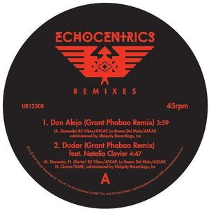 Echocentrics Remixes