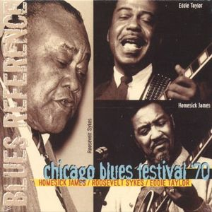 Chicago Blues Festival 70