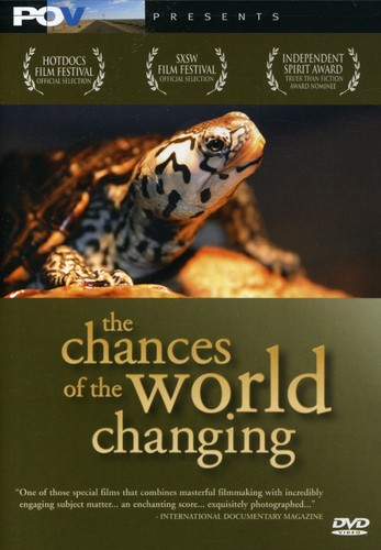 Chances of the World Changing