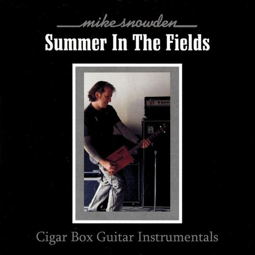 Summer in the Fields: Cigar Box Guitar