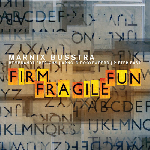 Firm Fragile Fun