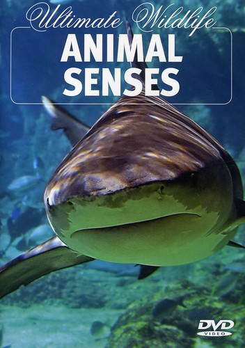 Ultimate Wildlife: Animal Senses