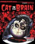 Cat In The Brain , Lucio Fulci