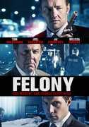 Felony , Joel Edgerton
