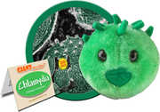 Chlamydia: Chlamydia Trachomatis (Giant Microbes)|