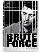 Brute Force (Criterion Collection) , Burt Lancaster