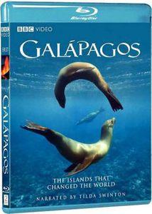 Galapagos (2007) , Tilda Swinton