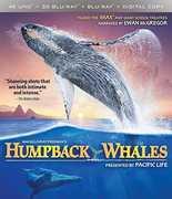Imax: Humpback Whales , Ewan McGregor