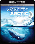 Imax: Wonders Of The Arctic , Victor Garber