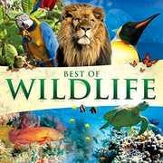 Best Of Wildlife /  Various , Various Artists