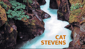Yusuf Cat Stevens - Back To Earth Anniversary Editions