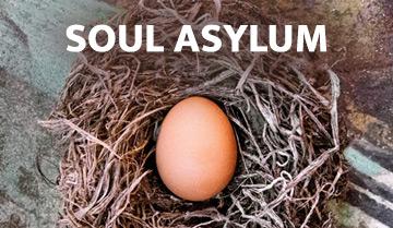 Soul Asylum - Hurry Up & Wait