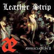 Appreciation Ii , Leather Strip