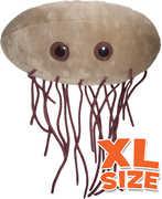 XL E. Coli: Escherichia Coli (Giant Microbes)|