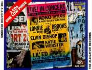 Alligator 20th Anniversary Tour