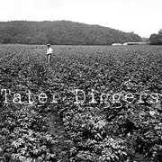 Tater Diggers
