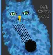Owl Meets Dove