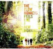 Feels Like a New Morning