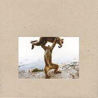 Shellac - Dude Incredible [Vinyl]