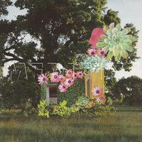 Medicine - Home Everywhere [Vinyl]